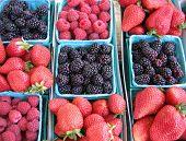 Baskets Of Berries