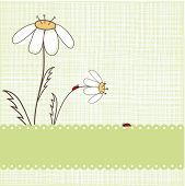 Greeting card with ladybirds. Vector.