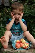 The Boy With Apples