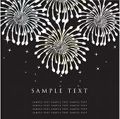 Fireworks. Vector greeting card.