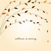 Autumn tree branch. Vector background
