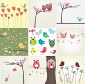picture of serenade  - Set of 9 valentines cards with cute birds - JPG