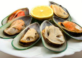 stock photo of shell-fishes  - New Zealand green mussels on the dish - JPG