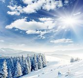 stock photo of winter landscape  - Beautiful winter landscape with snow covered trees - JPG