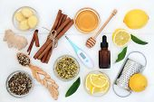 Natural flu and cold remedy ingredients with thermometer, echinacea herb, eucalyptus oil, fresh ging poster