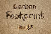 Carbon Footprint Written In Sand On A Beach.