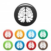Brain Neurons Icon. Simple Illustration Of Brain Neurons Vector Icon For Web Design Isolated On Whit poster