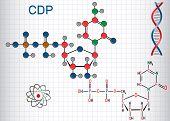 Cytidine Diphosphate (cdp) Molecule, It Is Nucleoside Molecule. Structural Chemical Formula And Mole poster