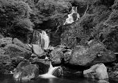 Torc waterfall in Ireland black and white