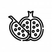 Pomegranate Icon Isolated On White Background. Pomegranate Icon In Trendy Design Style. Pomegranate  poster