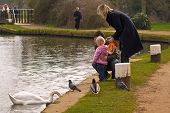 Family And The Swan