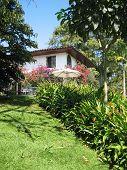 Colombian Garden