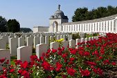 stock photo of burial  - Tyne Cot Cemetery in Ypres Belgium - JPG