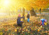 Family In Autumn Maple Park