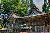 Shinto Shrine Roof In Japan