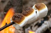 three marshmaloows roasting