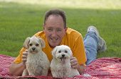 stock photo of maltipoo  - Man With His 2 Mixed Breed Dogs - JPG