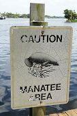 Manatee Caution Sign