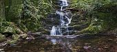 picture of buttermilk  - A panoramic view of Buttermilk Waterfalls in Stokes State Forest in Northern New Jersey.