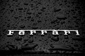 Ferrari Badge in the Rain