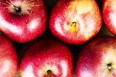 Apples close up for background
