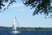 Boating Pleasure