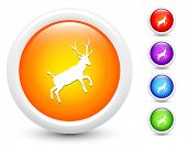 Deer Icons on Round Button Collection Original Illustration