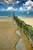 Old Wooden Breakwater On The Beach