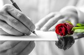stock photo of fragrance  - Close up of the hands of a man writing a love letter to his sweetheart with a single romantic red rose with selective colour lying on the desk alongside him