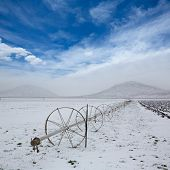 Cereal fields with irrigation wheels with snow in Nevada USA