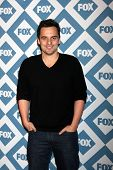 LOS ANGELES - JAN 13:  Jake Johnson at the FOX TCA Winter 2014 Party at Langham Huntington Hotel on