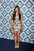 LOS ANGELES - JAN 13:  Jenna Ushkowitz at the FOX TCA Winter 2014 Party at Langham Huntington Hotel on January 13, 2014 in Pasadena, CA
