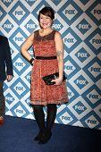 LOS ANGELES - JAN 13:  Amber Nash at the FOX TCA Winter 2014 Party at Langham Huntington Hotel on Ja