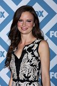 LOS ANGELES - JAN 13:  Mary Lynn Rajskub at the FOX TCA Winter 2014 Party at Langham Huntington Hote