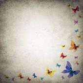 Grunge Premade Background Template With Swarm Of Butterflies