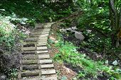 Wooden stairs in the forest. Sigulda.