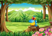 Illustration of a colorful parrot above the stump at the jungle