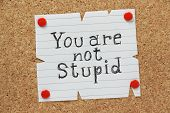 image of insulting  - The phrase You Are Not Stupid written by hand on a piece of paper pinned to a cork notice board - JPG