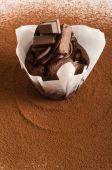 Chocolate Muffin On  Cocoa Powder