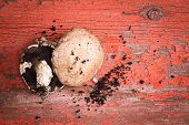stock photo of portobello mushroom  - Freshly picked organic portobello mushrooms one showing the gills and one the cap with loose soil lying on a grunge red painted wood table with flaking paint and copyspace - JPG
