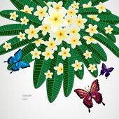 Floral design background. flowers with butterflies.