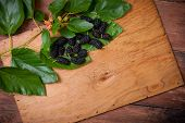 Mulberry On Wooden Background