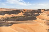 picture of oman  - Desert Wahiba in Oman with green bushes and clouds on blue sky - JPG