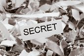 shredded paper tagged with secret, symbol photo for data destruction, banking secrecy and economic e