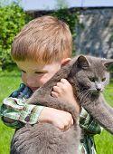 Cute boy hugs cat