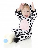 An adorable baby girl laughing excitedly in her holstein cow costume.  She sits by a half gallon of
