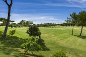 Golf Field In The Vilamoura, Portugal