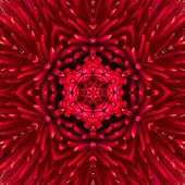 foto of kaleidoscope  - Red Mandala Concentric Flower Kaleidoscope Center - JPG