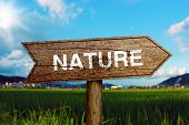 Nature Road Sign