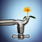 flowers sprouted in the metal tap eco concept